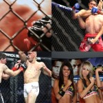 What's about MMAPLANET