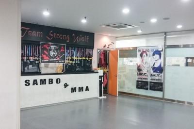 【写真】MMAとサンボを掲げる珍しいチーム・ストロング・ウルフだ。韓国ではキックジムでもMMAやクロスフィットは大流行りだ(C)MOOZINE