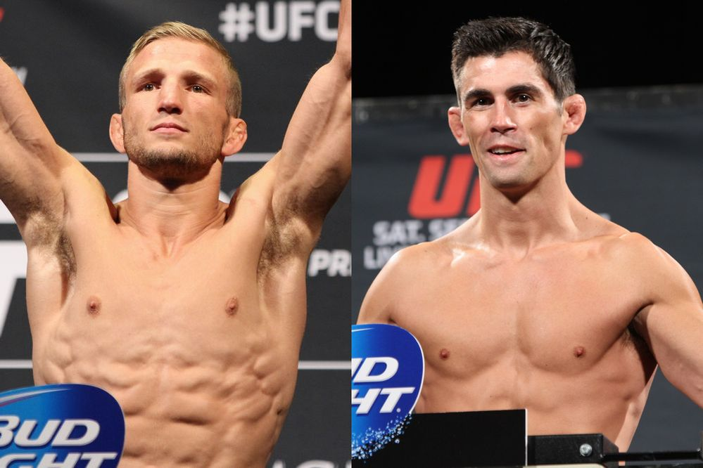 Cruz vs Dillashaw
