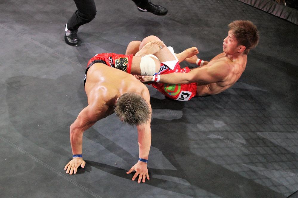 ito vs tokoro