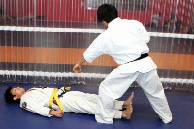 対してゴロンと寝転がった状態は統一体で相手が攻めずらい。武術的にみれば護身となる