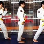 【Bu et Sports de combat】武術の叡智はMMAに通じる。武術の四大要素、観えている状態─03─