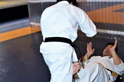【Bu et Sports de combat】武術の叡智はMMAに通じる。武術の四大要素、観えている状態─04─