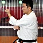 【Bu et Sports de combat】武術の叡智はMMAに通じる。武術の四大要素、観えている状態─05─