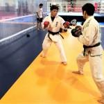 【Bu et Sports de combat】武術の叡智はMMAに通じる。四大要素を学ぶ組手と極真セミコン大会─03─