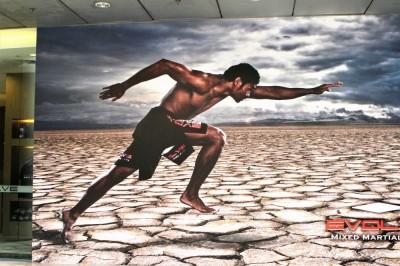 イヴォルブMMAが、世界規模のトライアウト主催。年俸530万円×3年間、UFCと交渉も!! 選ばれるのは20名!!