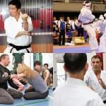 【Bu et Sports de combat】武術の叡智はMMAに通じる。再確認、武術と格闘技の違い─01─