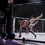 【Bu et Sports de combat】MMAを武術的な観点で見る。ジェンキンス✖パーマー「レスリングで先を取る」