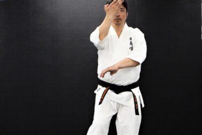 【Bu et Sports de combat】武術で勝つ。型の分解、サンチン編─12─虎口で知る、型が伝えること
