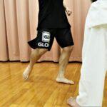 【Bu et Sports de combat】武術的な観点……フルコンタクト空手で見るMMA。下段回し蹴り