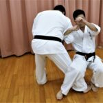 【Bu et Sports de combat】武術で勝つ。型の分解、サンチン編─15─外側に入る虎口、倒&極