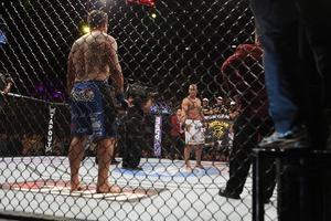 UFC146